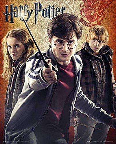GB eye-Stampa con cornice, 40 x 50 cm, motivo: Harry Potter Trio, multicolore
