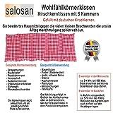 Aktion-NATUR-PUR-Kirschkernkissen-von-salosan-5-Kammern-Kissen-zur-Wrme-Klte-Entspannungs-Wellness-und-Massagetherapie-bestens-geeignet-in-liebevoller-Handarbeit-aus-biologischen-Rohstoffen-hergestell