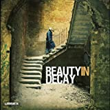 Beauty in Decay: The Art of Urban Exploration ~ RomanyWG