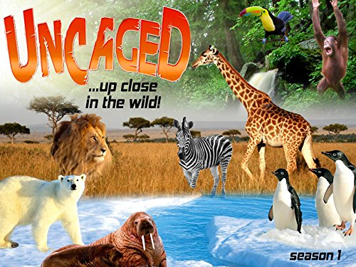 Uncaged.up close in the wild - Season 1