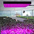 Erligpowht 45W LED Red Blue Hanging Light for Indoor Plant