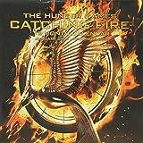 Hunger Games: Catching Fire Offical 2014 Calendar