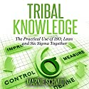 Tribal Knowledge - The Practical Use of ISO, Lean and Six Sigma Together Audiobook by Marnie Schmidt Narrated by Beth Bostic