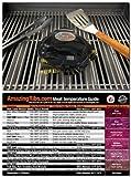 Grillbots Grillbot Robot Grill Cleaner (Black Color) + Meathead Original Temperature magnet guide