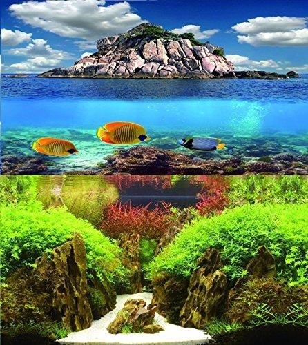30cm-12-haut-double-face-pour-le-poisson-de-fond-de-lAquarium-de-Tank-Reptile-vivarium-Dcor