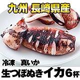 冷凍 長崎産真イカつぼ抜き 1kg(6本)