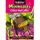 Green Board Games Colour and Learn Minibeasts - Libro para colorear, diseños de insectos