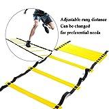 Apelila 4M 8 Rung Speed Agility Training Ladder,Football Agility Sports Exercise Ladder Equipment
