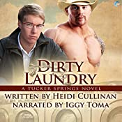 Dirty Laundry: A Tucker Springs Novel | Heidi Cullinan