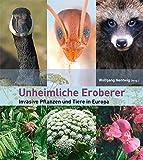 Image de Unheimliche Eroberer: Invasive Pflanzen und Tiere in Europa