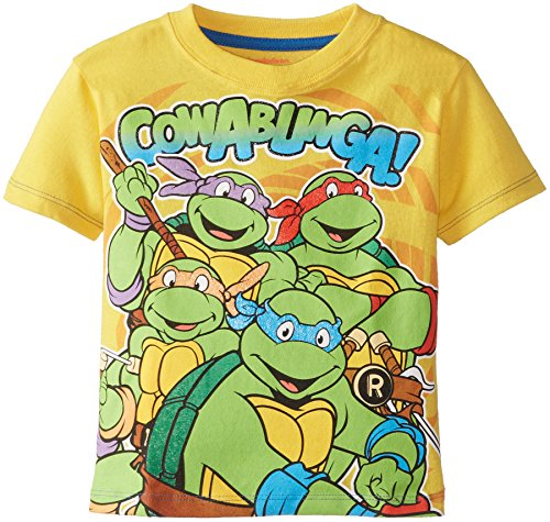 Teenage Mutant Ninja Turtles Little Boys' Cowabunga Group Shot Tee
