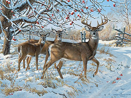 Winter Deer, A 500 Piece Jigsaw Puzzle By Cobble Hill