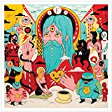 Father John Misty Fear Fun [VINYL]