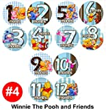WINNIE POOH FRIENDS Baby Month Onesie Stickers Baby Shower Gift Photo Shower Stickers, photo prop by OnesieStickers