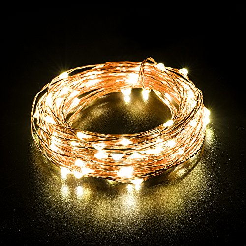 WishWorld LED String Lights Copper Wire Lights, Waterproof Starry String Lights, 33ft 100 Leds Fairy Rope Lights for Indoor/Outdoor Decor, Home, Garden, Party and Holiday Decorations(Warm White)