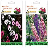 Alkarty Dimorphotheca White Star And Larkspur Fire Mixed Seeds Pack Of 20 (Winter)