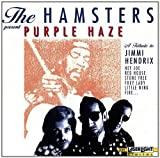 The Hamsters Purple Haze