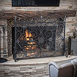 Darcie Black Brushed Silver Finish Wrought Iron Fireplace Screen from Great Deal Furniture