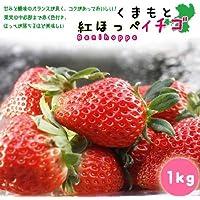熊本産イチゴ(紅ほっぺ)1キロ