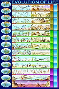 Safari LTD Evolution of Life Laminated Poster