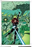 img - for Black Widow: Web of Intrigue book / textbook / text book