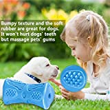 Dog Toys, Jakpak Interactive Squeaky Toys for Large Medium Dog Non-Toxic Nature Rubber Made Tough Dog Toys Outdoor Dog Chew Toy for Boredom Pet IQ Toy Dogs Healthy Teeth Gums Massage Toys Blue