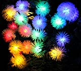TLT 40 LED Pinecone String lights Great for Christmas Garden Patio Party Decor (Multi-color), LED028C