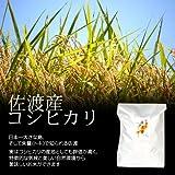 佐渡産コシヒカリ[新米] 白米(精米) 20kg(10kg×2袋)