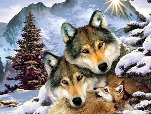 Wolf Harmony a 300-Piece Jigsaw Puzzle by Sunsout Inc.
