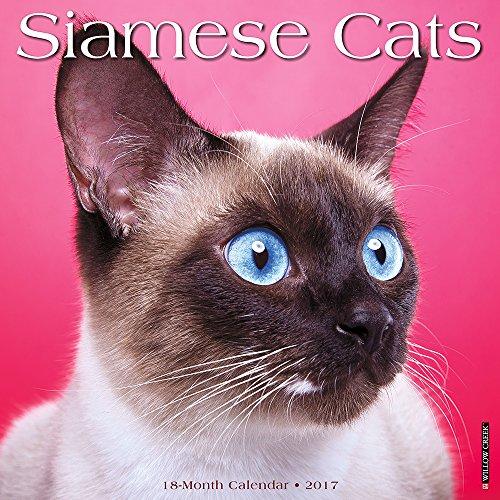 Siamese Cats 2017 Wall Calendar