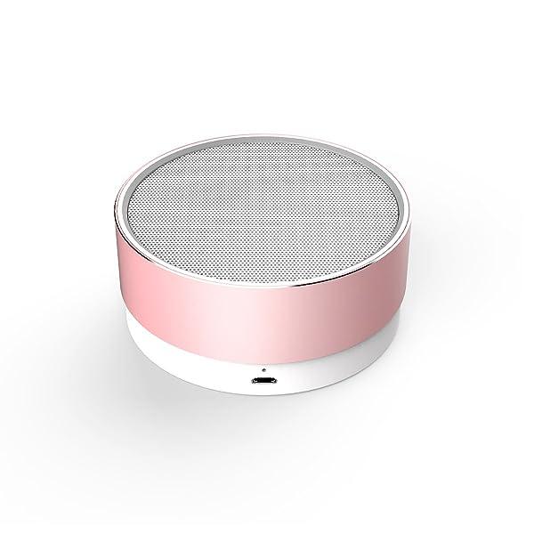 Portable Wireless Bluetooth Speakers 2000mAh, CSR 4.1, 5W Enhanced Bass,High-def Sound (Rose Gold)