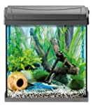 Tetra 151536 AquaArt Crayfish Aquariu...