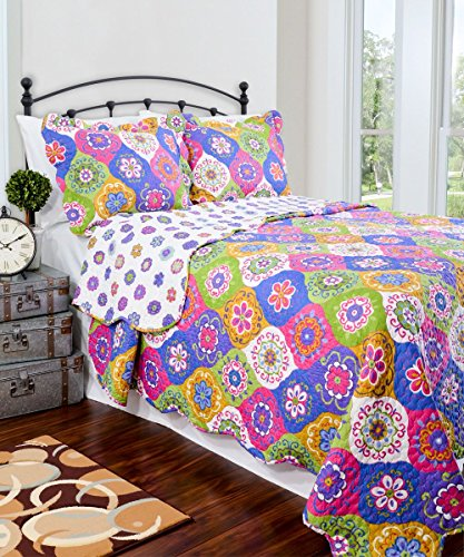 Quilt Set - Vintage Collection - Machine Washable - Satisfaction Guaranteed (Queen)