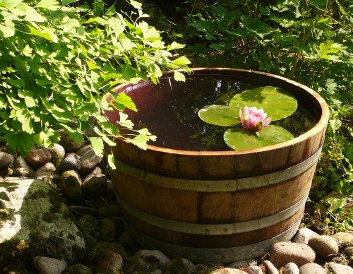 Demi tonneau de vin en bois de ch ne transform en pot fleurs ou mini tang diam tre 70 cm - Bassin dans demi tonneau limoges ...