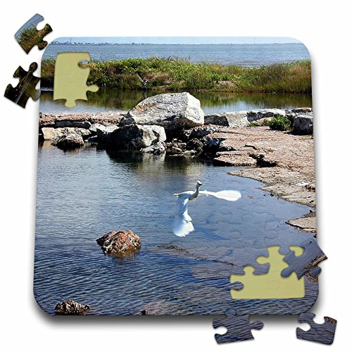Beverly Turner Photography - Large White Egret Flying on the Coast - 10x10 Inch Puzzle (pzl_11892_2)