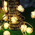 7ft/2.2M 20LED Pinecone Shap Battery Operated Christmas String Lights for Christmas Wedding Holiday Decoration [2015 Newest]