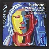 Ikebana Merzbows Amlux Rebuilt, Reused And Recycledby Merzbow
