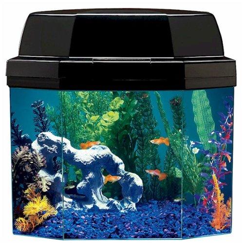 Best aqua brite fish aquarium great deals for Fish tank deals