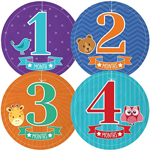 Baby First Year Monthly Milestone Stickers for Photo Album & Memory Book, Months 1-12 (Zapatos Good Year compare prices)