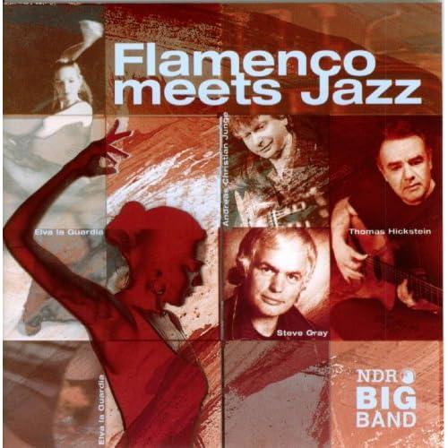 Ndr 2 Big Band Flamenco Meets Jazz Thomas Hickstein