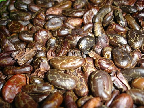 Alive and Aware Certified Organic Raw Cacao Nibs from Ecuador - 2 Pounds