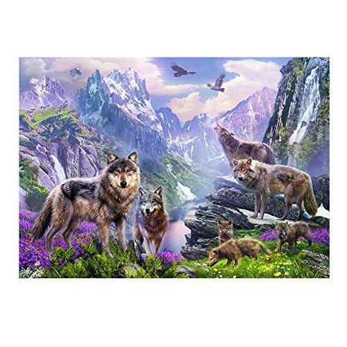 diamondo-septwolves-5d-diamond-diy-painting-craft-home-decor