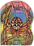 img - for Misunderstood: Spiders by L'Hommedieu, Arthur John (1997) Paperback book / textbook / text book
