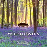 Wildflowers ~ solo piano with nature sounds by Robi Botos [Music CD]