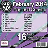All Star Karaoke February 2014 Pop and Country Hits A (ASK-1402A)