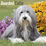 Wirestitched Bearded Collie 2015 (Square)
