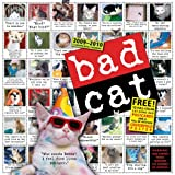 Bad Cat Wall Calendar 2010by Workman Publishing...