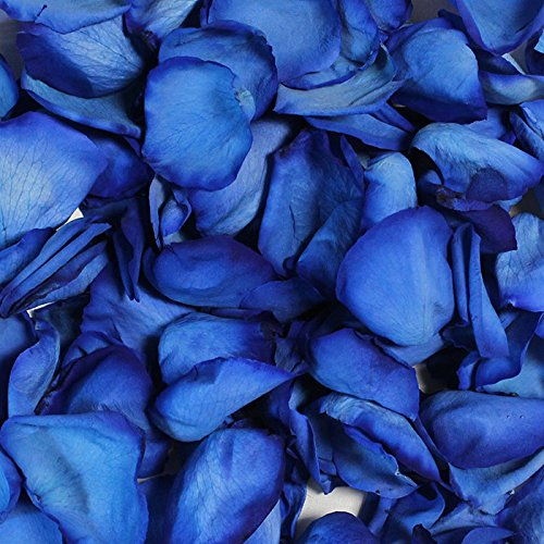 Freeze Dried Rose Petals in Dyed Blue - 8 Cups (Freeze Dried Rose Petals Blue compare prices)