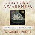 Living a Life of Awareness: Daily Meditations on the Toltec Path Audiobook by don Miguel Ruiz Jr. Narrated by Roger Hughes