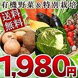 ぐるめライン 野菜セット 有機JAS認定野菜 特別栽培野菜 (お試しセット6?7品)